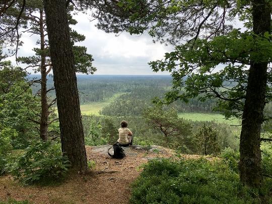 Utsikt från Hunnshultberget vid Lidhult, ett blivande naturreservat.