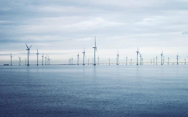 Vindkraftspark till havs. Foto: Ingvar Lagenfelt