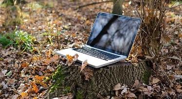 Laptop i naturen