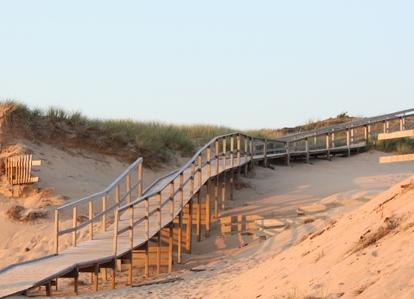 Brygga över sanddynerna i Tylösand