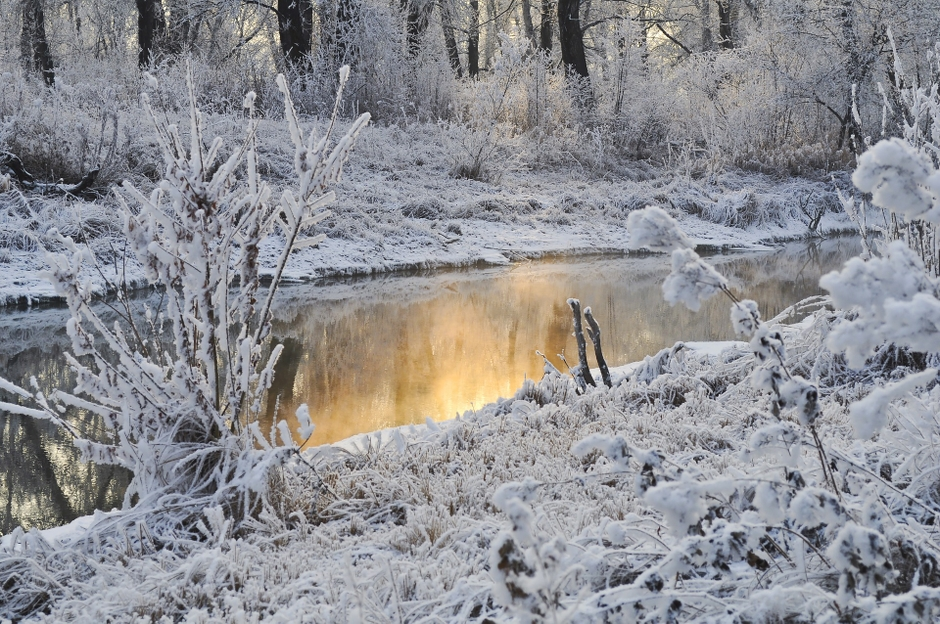 Vinterlandskap vid vatten. Foto: Pixabay