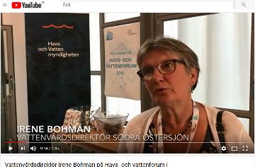 Klicka på bilden för att lyssna på vattenvårdsdirektör Irene Bohman.