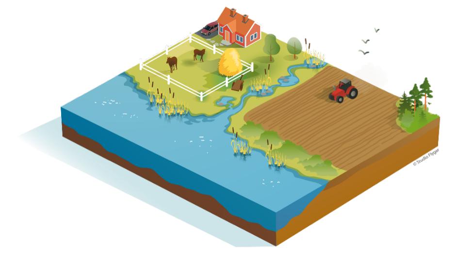 Illustration med vatten, djur och jordbruk. Illustration: Tobias Flygar.