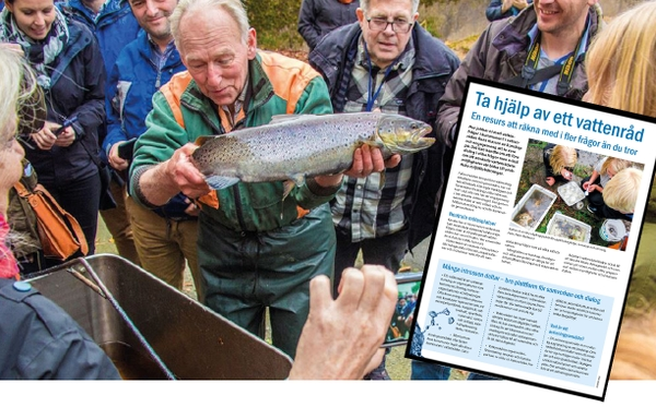 En grupp människor tittar på en fisk. Bild på informationsbladet Ta hjälp av ett vattenråd. Foto: Peter Nolbrant.