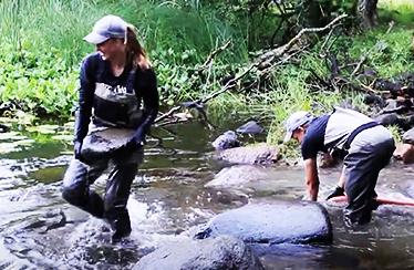 Två personer flyttar stenar i ett vattendrag. Foto: Anders Lagerdahl.