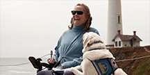 Woman in wheelchair with guide dog. Photo