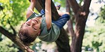 Ett barn som klatrer i et tre. Foto