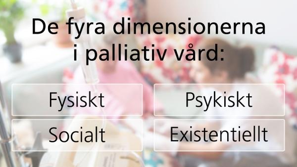 De fyra dimensionerna