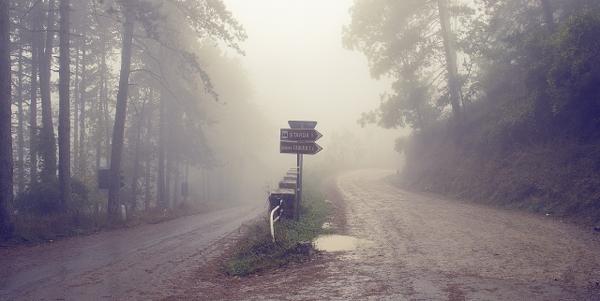 Ett vägskäl (Foto av Yakir på Pixabay.com)