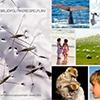 Miljöpolitikensspelplan