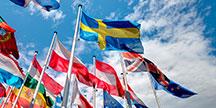 European flags. Photo