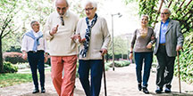 Elderly people walking. Photo